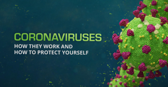 Coronaviruses. How They Work and How to Protect Yourself